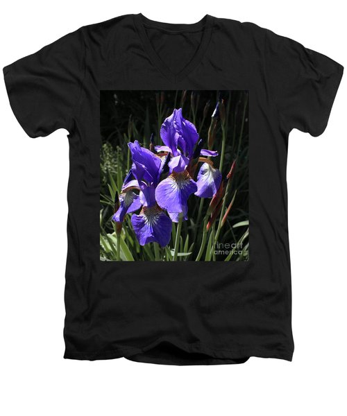 Quebec Provincial Flower Men's V-Neck T-Shirt