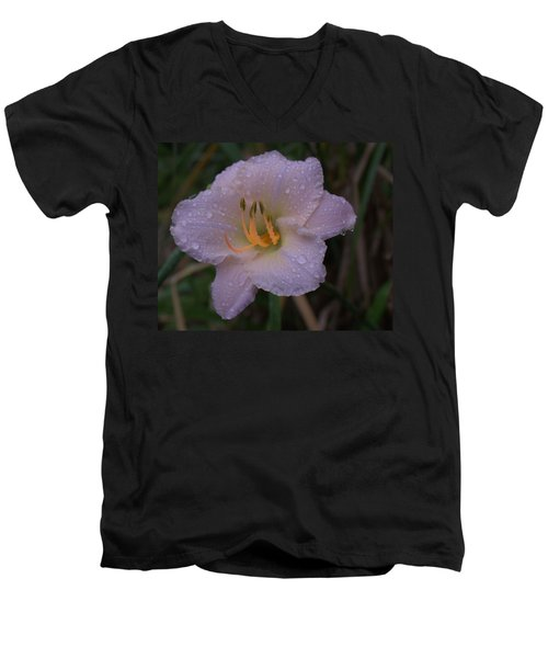 Rain Daylilly 2 Men's V-Neck T-Shirt