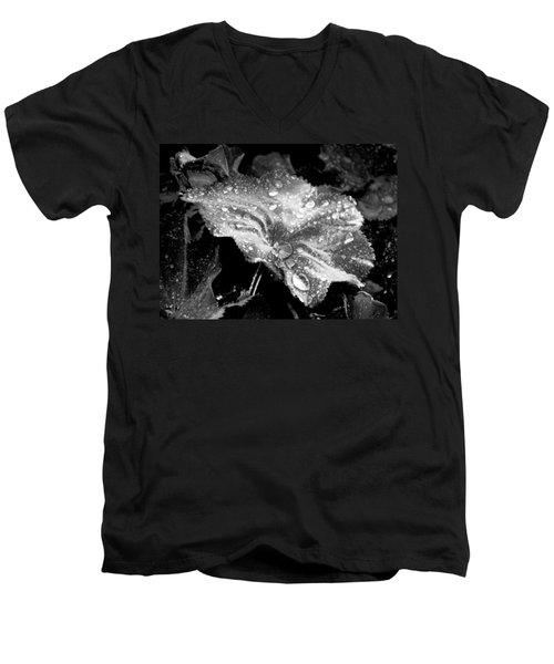 Raindrop Covered Leaf Men's V-Neck T-Shirt