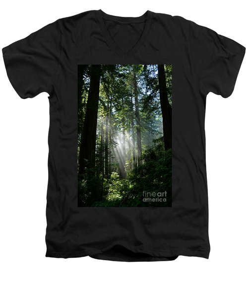 Rays In Redwoods Men's V-Neck T-Shirt