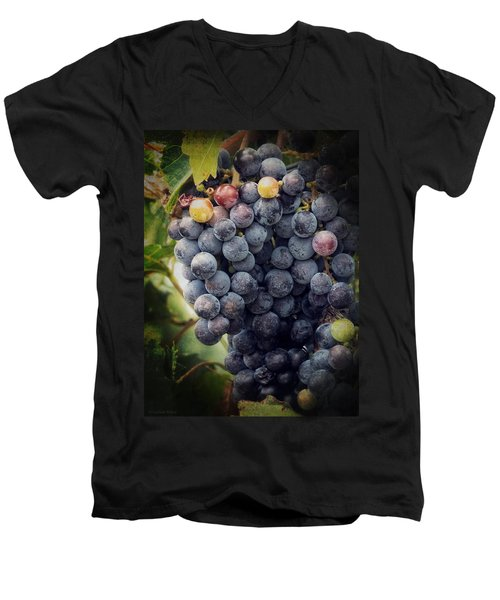 Ready For Harvest Men's V-Neck T-Shirt