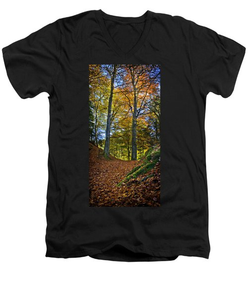 Red Carpet In Reelig Glen During Autumn Men's V-Neck T-Shirt