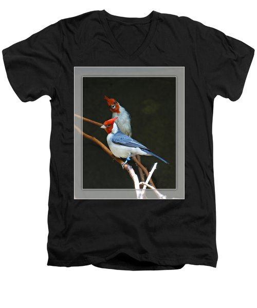 Red-crested Cardinal Men's V-Neck T-Shirt