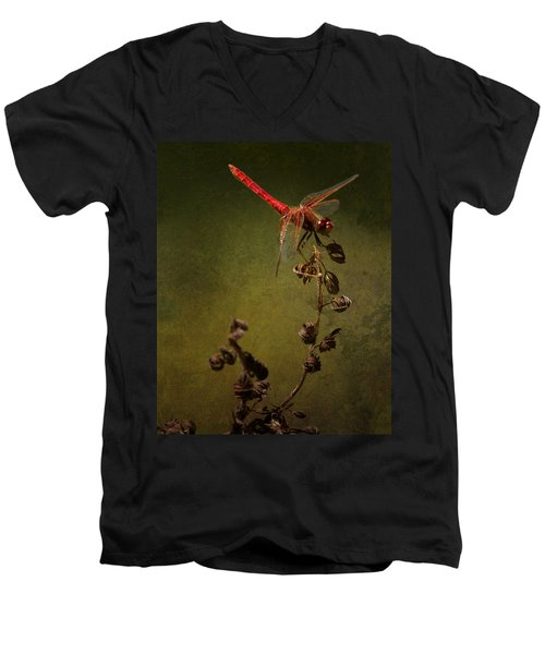 Red Dragonfly On A Dead Plant Men's V-Neck T-Shirt