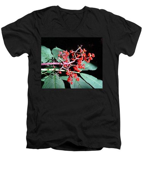 Red Elderberry Men's V-Neck T-Shirt by Cheryl Hoyle