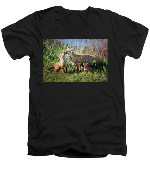 Red Fox Family Men's V-Neck T-Shirt