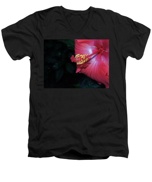 Men's V-Neck T-Shirt featuring the photograph Red Hibiscus by Ron Davidson