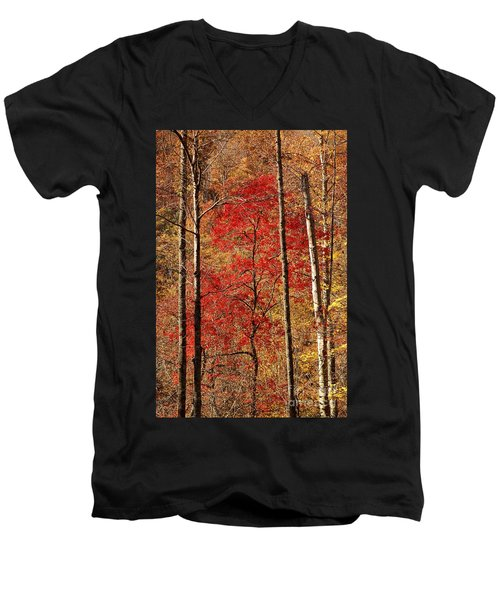 Red Leaves Men's V-Neck T-Shirt by Patrick Shupert