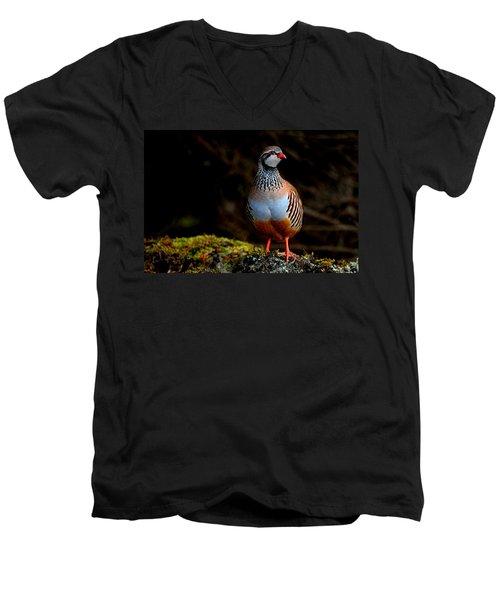 Red-legged Partridge Men's V-Neck T-Shirt