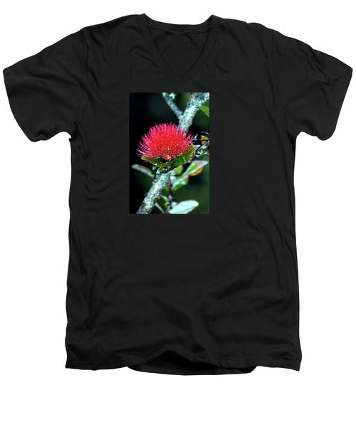 Red Lehua  Kawaiko'olihilihiokalikolehua Men's V-Neck T-Shirt by Lehua Pekelo-Stearns