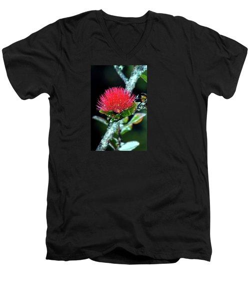 Red Lehua  Kawaiko'olihilihiokalikolehua Men's V-Neck T-Shirt