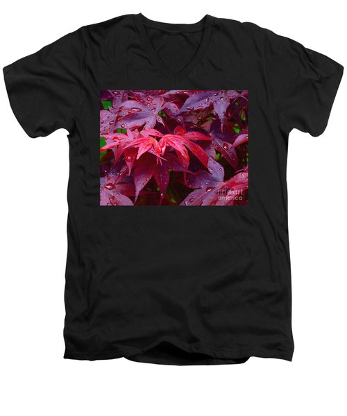 Men's V-Neck T-Shirt featuring the photograph Red Maple After Rain by Ann Horn