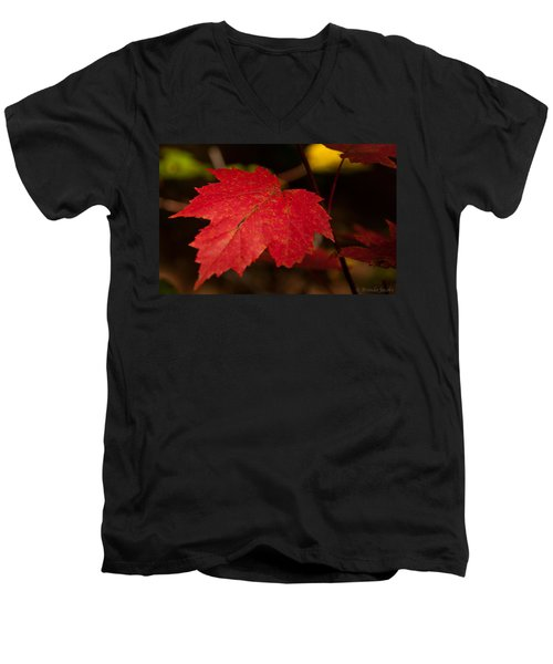 Red Maple Leaf In Fall Men's V-Neck T-Shirt
