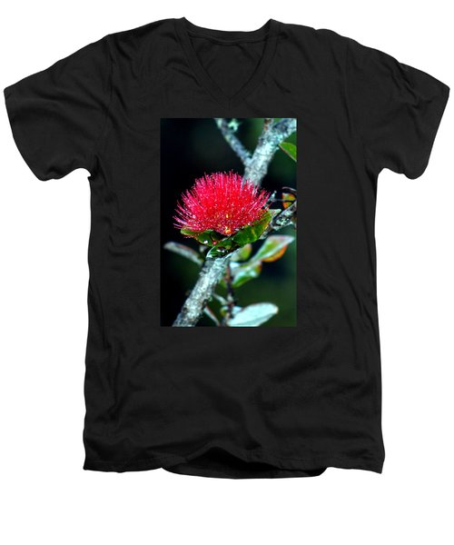 Men's V-Neck T-Shirt featuring the photograph Red Ohia Lehua In Hawaii Volcano Mist by Lehua Pekelo-Stearns