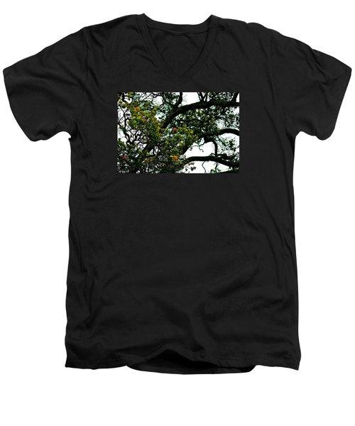 Red Ohia Lehua Tree Men's V-Neck T-Shirt