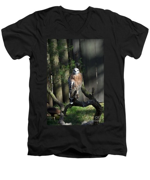 Men's V-Neck T-Shirt featuring the photograph Red Shouldered-hawk by Robert Meanor