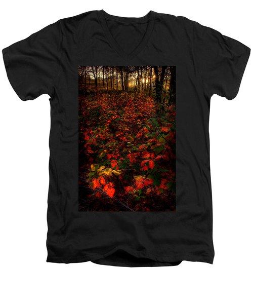 Red Sumac Men's V-Neck T-Shirt