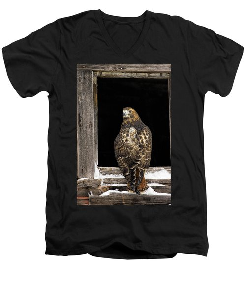 Red Tailed Men's V-Neck T-Shirt