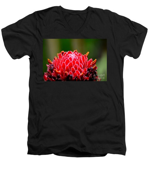 Red Torch Ginger Flower Head From Tropics Singapore Men's V-Neck T-Shirt by Imran Ahmed