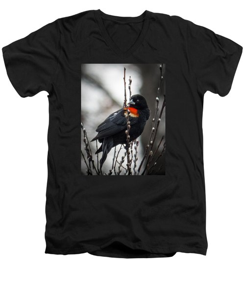 Men's V-Neck T-Shirt featuring the photograph Red Winged Blackbird In Pussy Willows by Patti Deters