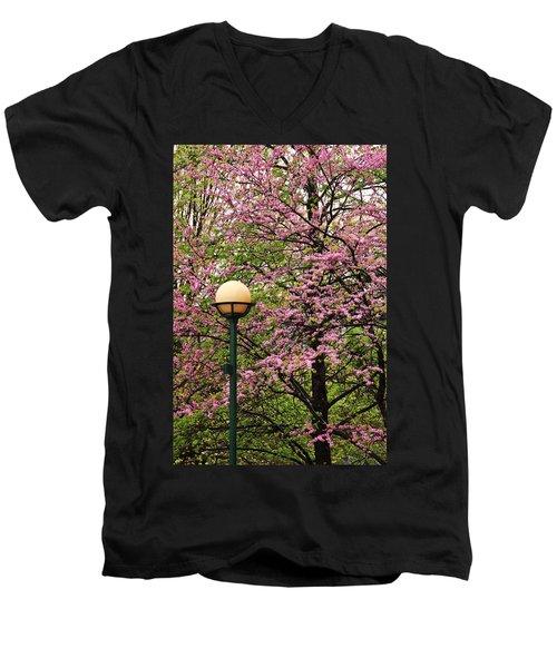 Redbud And Lamp Men's V-Neck T-Shirt