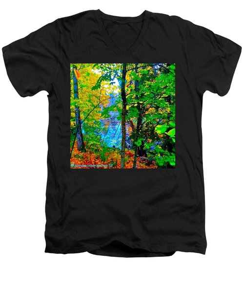 Reed College Canyon Reflections Of Autumn Men's V-Neck T-Shirt by Anna Porter