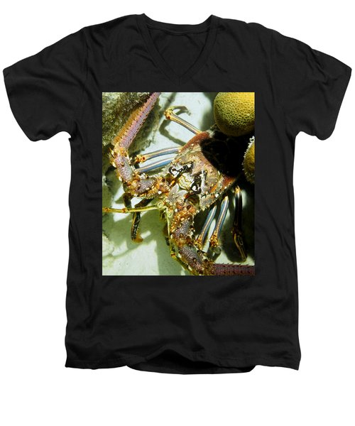 Reef Lobster Close Up Spotlight Men's V-Neck T-Shirt by Amy McDaniel
