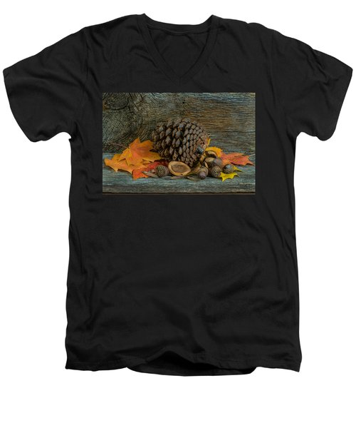Remnants Of Fall Men's V-Neck T-Shirt