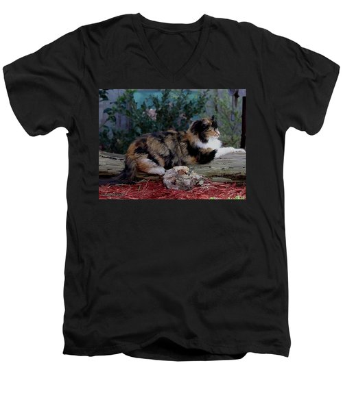 Resting Calico Cat Men's V-Neck T-Shirt