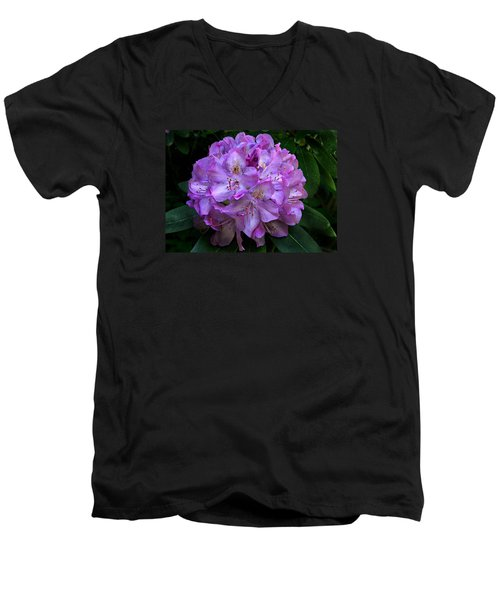 Rhododendron ' Roseum Elegans '  Men's V-Neck T-Shirt by William Tanneberger
