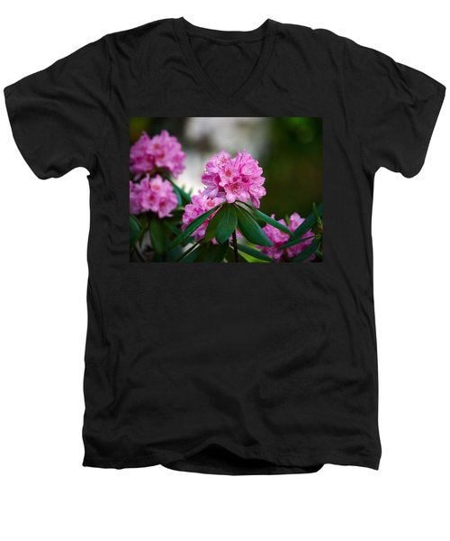 Rhododendron Men's V-Neck T-Shirt by Jouko Lehto