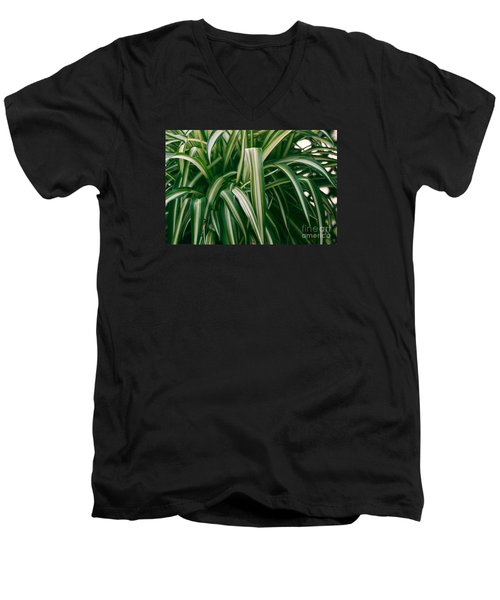 Ribbon Grass Men's V-Neck T-Shirt