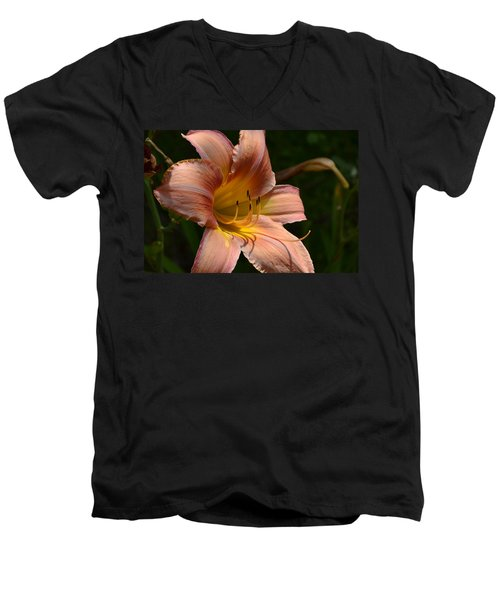 Men's V-Neck T-Shirt featuring the photograph Rich Day by Larry Bishop