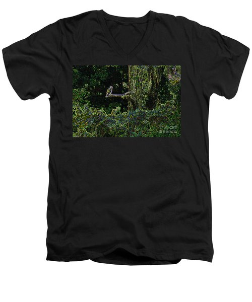 River Bird Of Prey Men's V-Neck T-Shirt