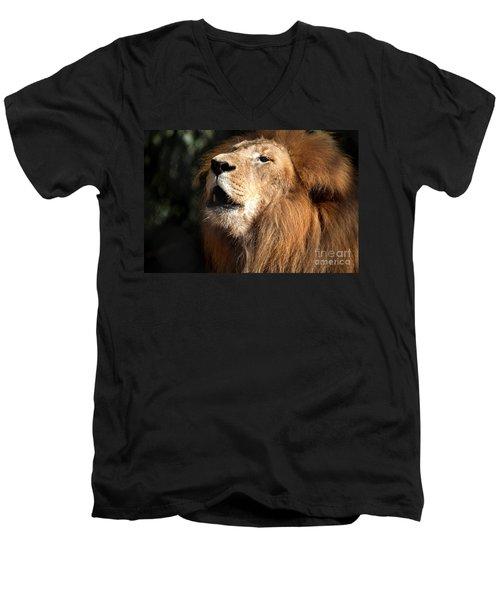 Men's V-Neck T-Shirt featuring the photograph Roar - African Lion by Meg Rousher