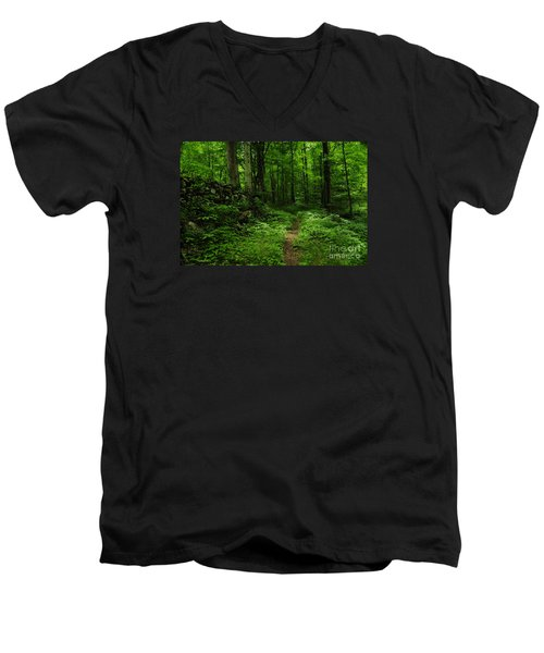 Men's V-Neck T-Shirt featuring the photograph Roaring Fork Trail by Debbie Green