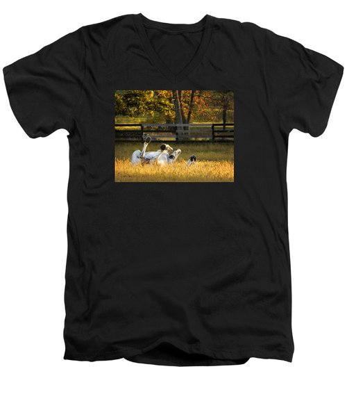 Men's V-Neck T-Shirt featuring the photograph Roll In The Hay by Joan Davis