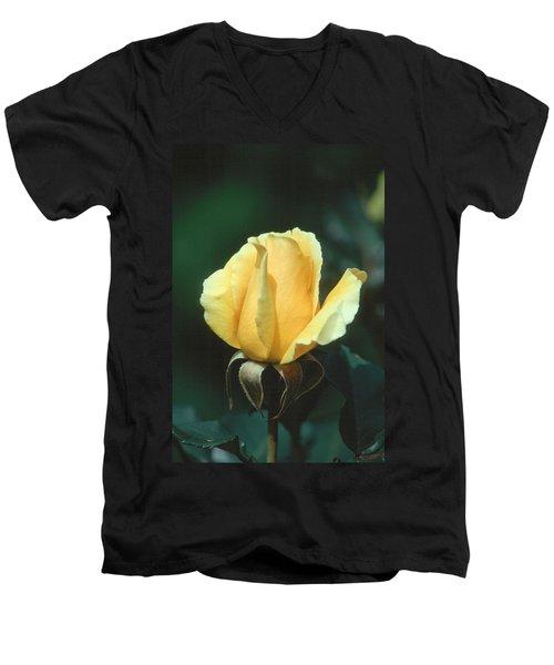 Rose 2 Men's V-Neck T-Shirt by Andy Shomock