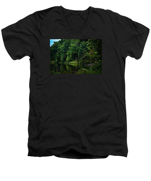 Rose Lake Beauty Men's V-Neck T-Shirt