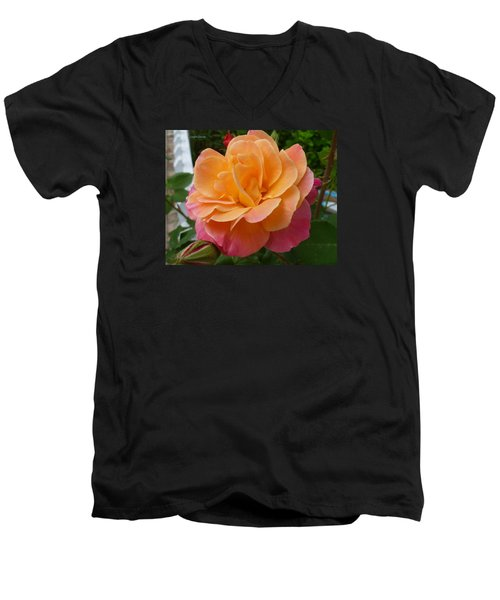 Men's V-Neck T-Shirt featuring the photograph Rosemary And Thyme by Lingfai Leung