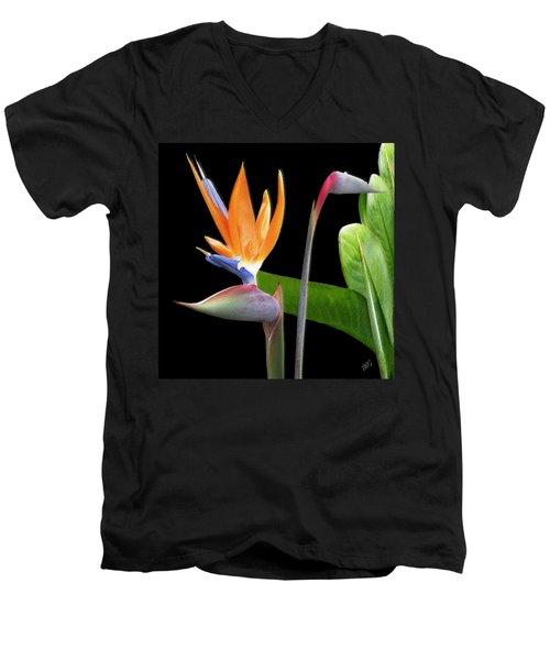 Royal Beauty II - Bird Of Paradise Men's V-Neck T-Shirt