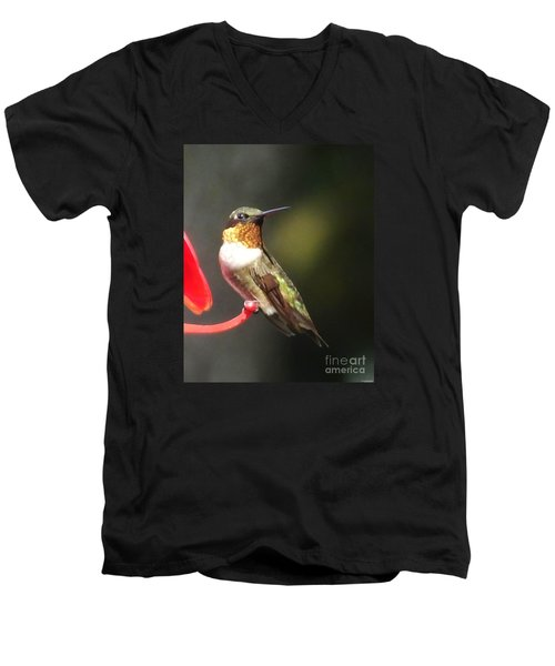 Ruby Throated Hummingbird 2 Men's V-Neck T-Shirt