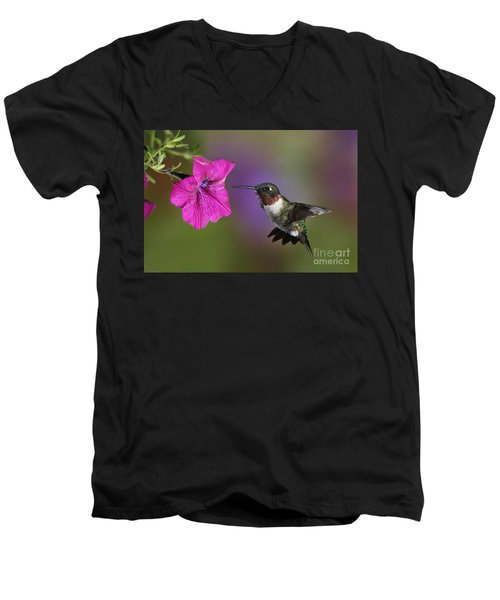 Ruby-throated Hummingbird - D004190 Men's V-Neck T-Shirt