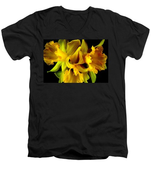 Ruffled Daffodils Men's V-Neck T-Shirt