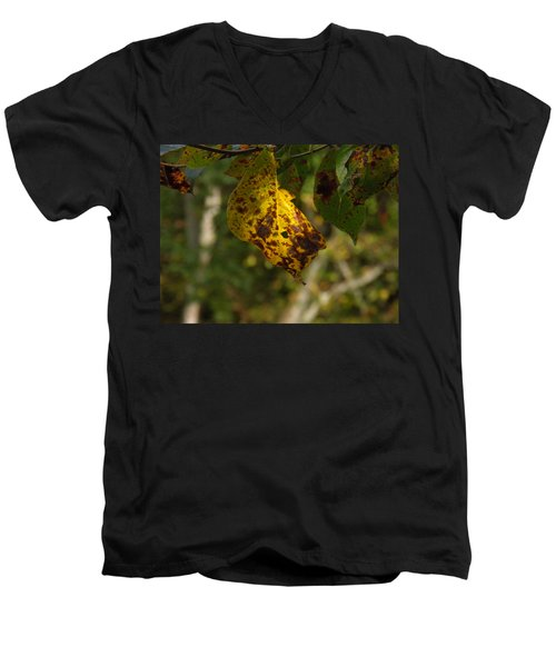 Men's V-Neck T-Shirt featuring the photograph Rusty Leaf by Nick Kirby