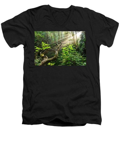 Sacred Grove Men's V-Neck T-Shirt