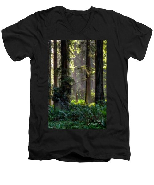 Sanctuary 2 Men's V-Neck T-Shirt by Mark Alder
