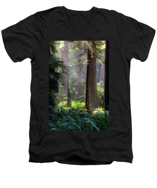 Sanctuary Men's V-Neck T-Shirt by Mark Alder