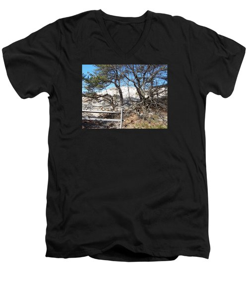 Sand Dune With Trees Men's V-Neck T-Shirt by Catherine Gagne