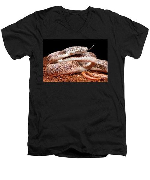 Savu Python In Defensive Posture Men's V-Neck T-Shirt